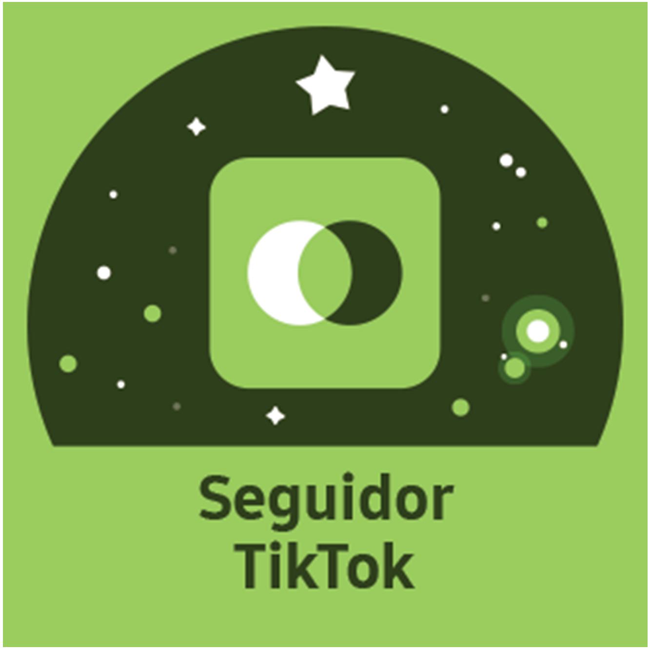 TikTok Follower