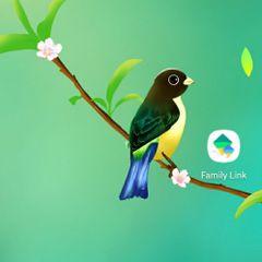 BurungAneV2