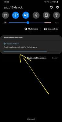 Screenshot_20201010-112542_Software update.jpg