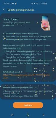 Screenshot_20201120-103721_Software update.jpg