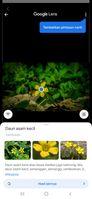 Screenshot_20201126-135850_Google.jpg
