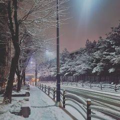 화니의갤S21U유저