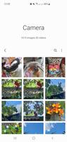 Screenshot_20210211-125937_Gallery_14606.png