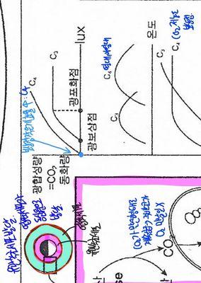 Screenshot_20210331-114829_Samsung Notes.jpg