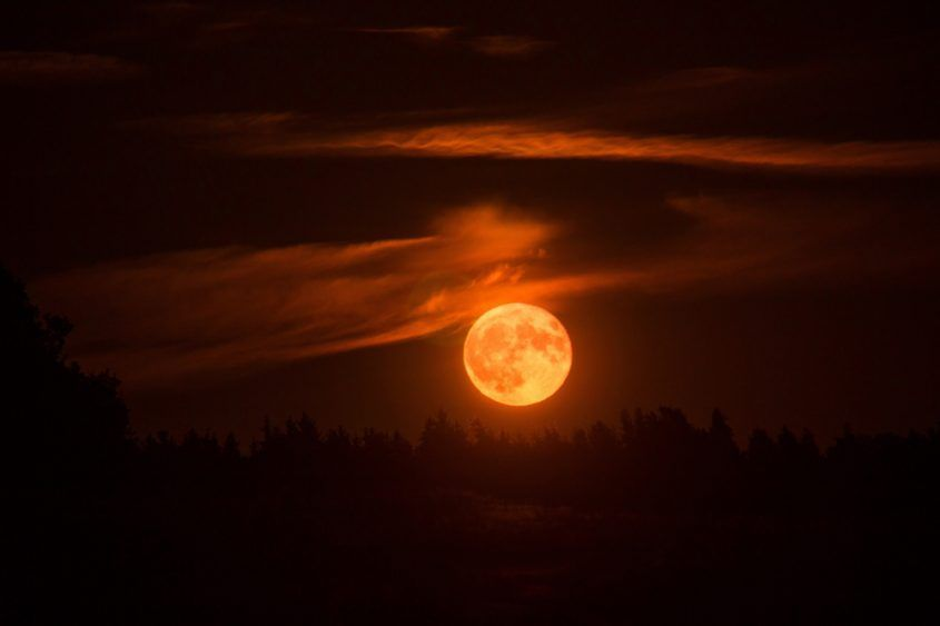 """A """"blood moon"""" during the upcoming lunar eclipse on 26 May will be visible across Southeast Asia and Australia for about 14 minutes, weather permitting. (Image credit: Shutterstock)"""