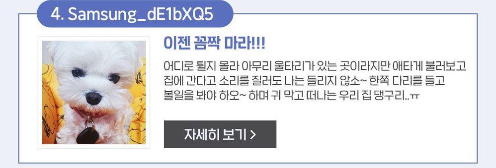 투표이벤트_09.jpg